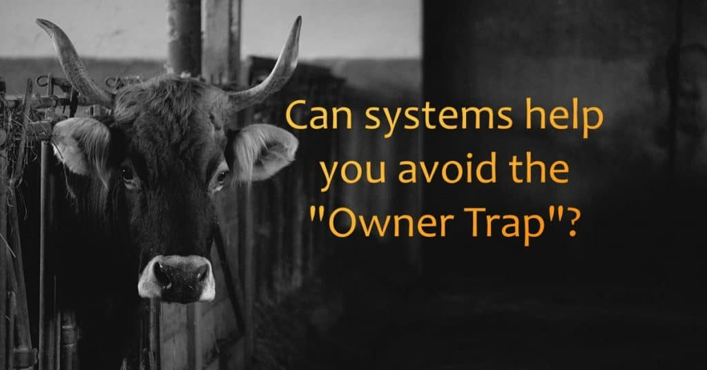 Can systems help you avoid the owner trap?