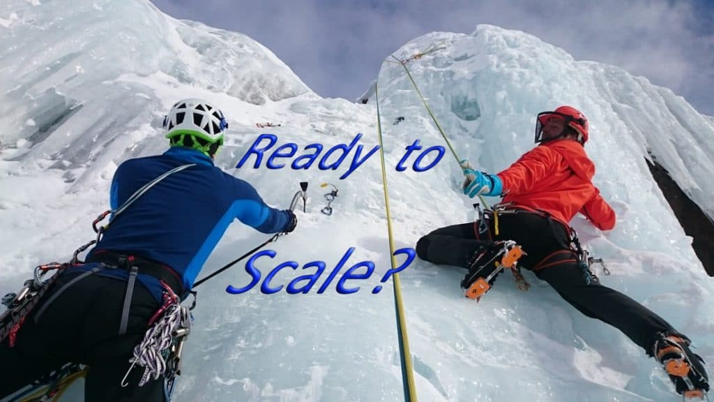 Scale the business